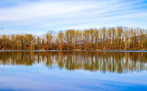 landscape, lake, water